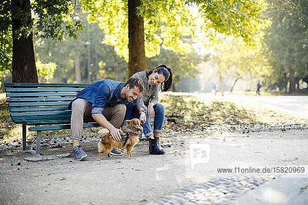 Glückliches junges Paar mit Hund im Park auf einer Bank sitzend Glückliches junges Paar mit Hund im Park auf einer Bank sitzend