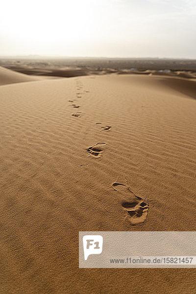 Fussspuren in Sanddünen in der Wüste Sahara  Merzouga  Marokko