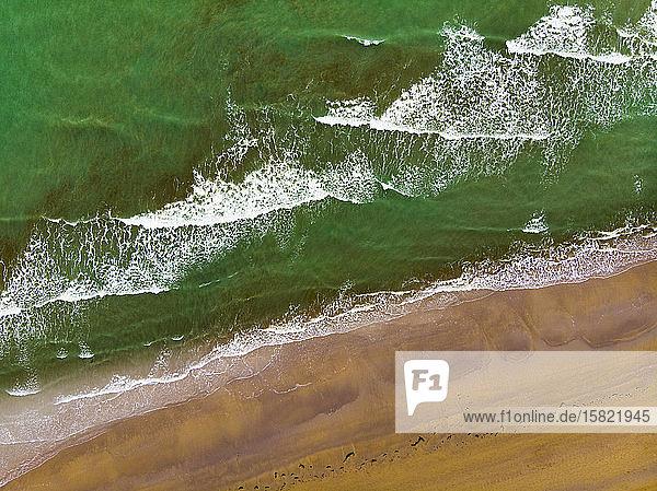 Italien  Provinz Udine  Lignano  Drohnenansicht des sandigen Küstenstrandes und des grünen Wassers der Adria