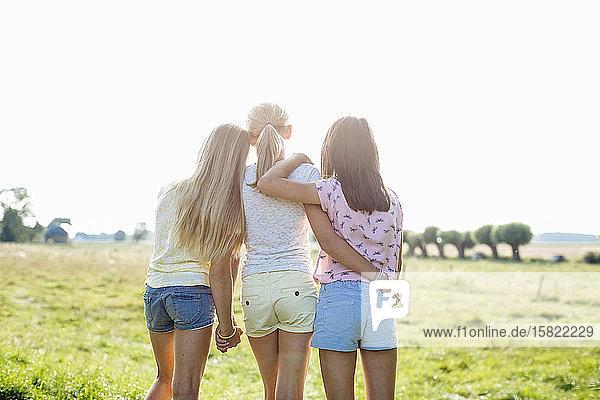 Rückansicht von liebevollen Mädchen auf einem Feld Rückansicht von liebevollen Mädchen auf einem Feld