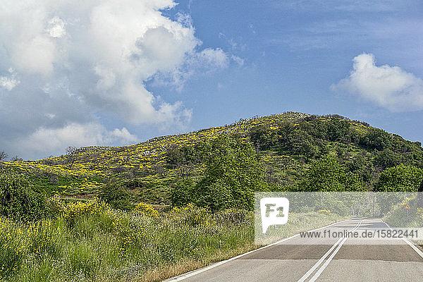 Griechenland  Oichalia  Leere Landstraße im Frühling