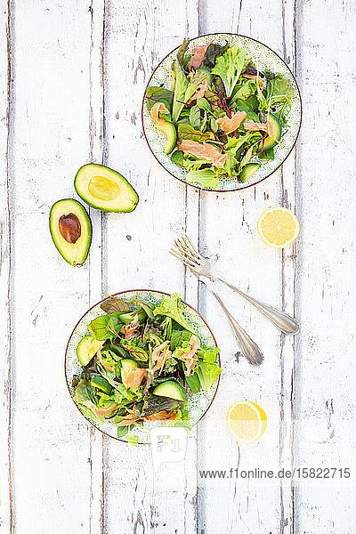 Zwei Teller verzehrfertiger grüner Salat mit Rucola  Lollo Rosso-Salat  Babyspinat  Rote-Bete-Blättern  Avocado  Feldsalat und Lachs