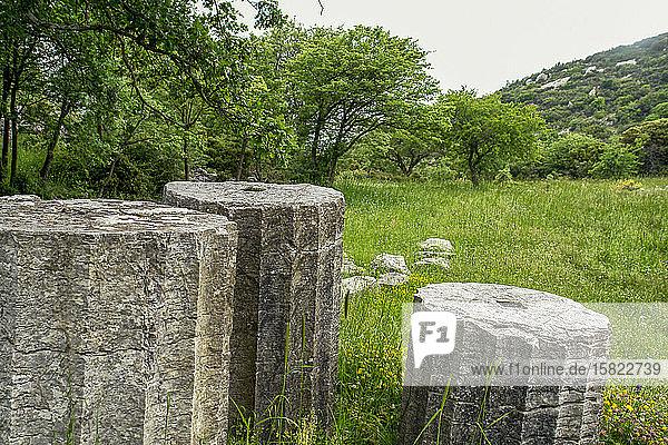 Griechenland  Oichalia  Antike Säulen in der archäologischen Stätte Bassae