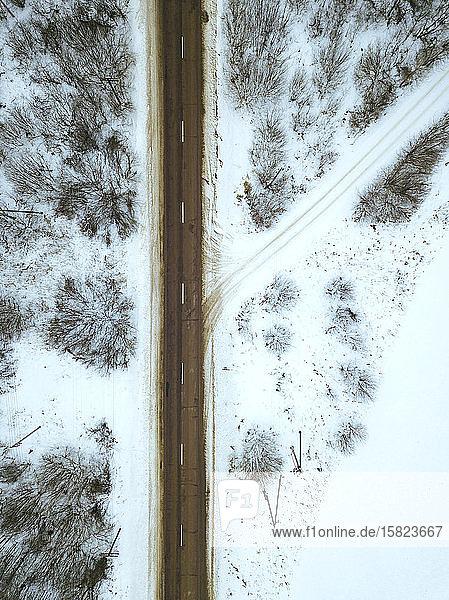 Russland  Gebiet Moskau  Luftaufnahme der kahlen Bäume um die leere Landstraße im Winter