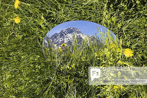 Round mirroe lying in grass  reflecting the mountains of Val Badia  Alto Adige  Ilaty
