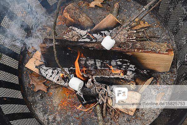 Feuerstelle mit gerösteten Marshmallows auf Stöcken