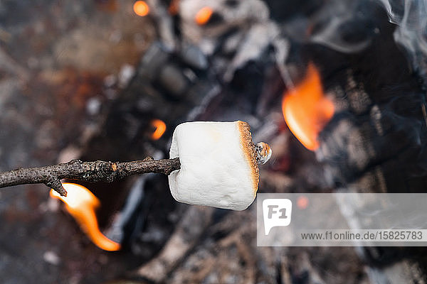 Close up of Marshmallow on stick roasting over fire