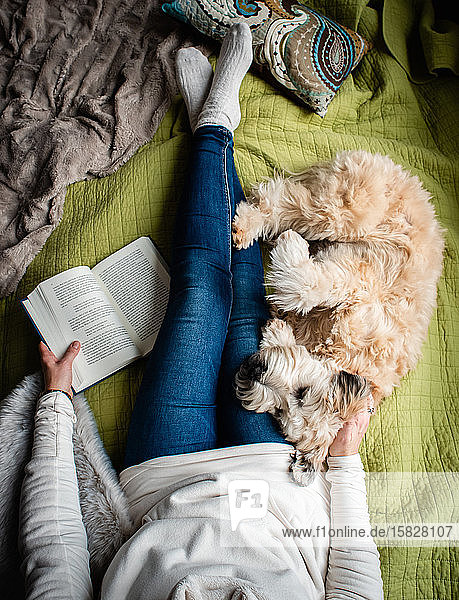 Overhead view of woman's torso on a bed with a book and her dog.
