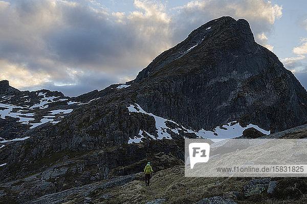 Weibliche Wanderin auf schwachem Weg zum Gipfel des Narvtind  Moskenesøy  Lofoten  Norwegen