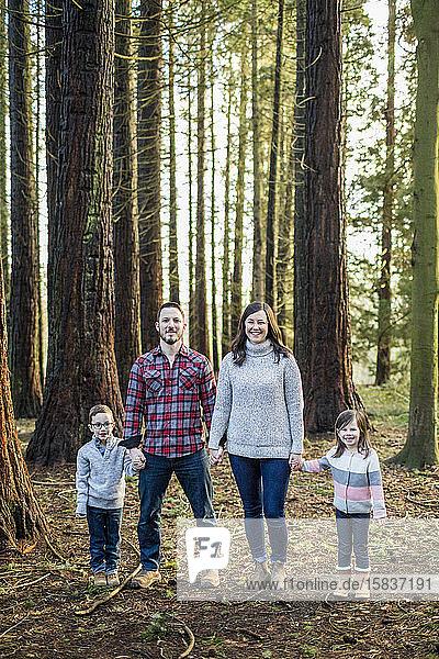 Im Wald stehende vierköpfige Familie  die Hände halten.
