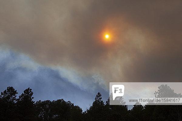Rauch von einem Waldbrand im Südwesten Colorados blockiert die Sonne.