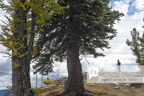 Mann mit Mobiltelefon auf Berg stehend