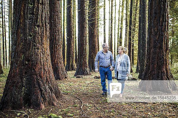 Romantisches Rentnerehepaar beim Spaziergang durch den Wald.