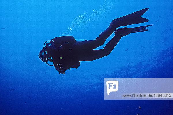 Silhouette eines Tauchgangs mit einer Kamera unter Wasser auf den Kanalinseln