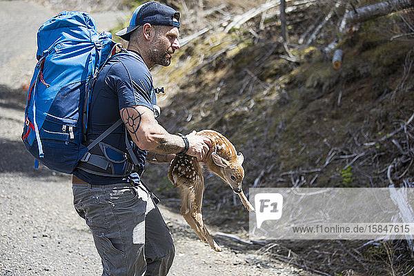 Hiker rescues newborn deer  moves off roadway.