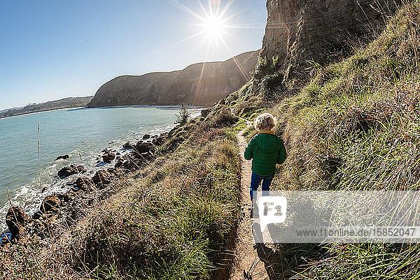 Preschooler walking on seaside mountain path on sunny day in New Zealand