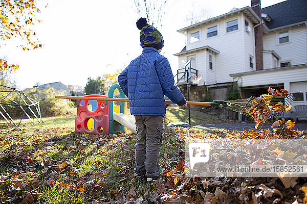 Rear view of anonymous young boy raking leaves in yard behind home