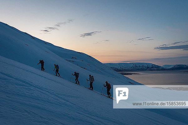 Gruppenskilauf in Island bei Sonnenaufgang