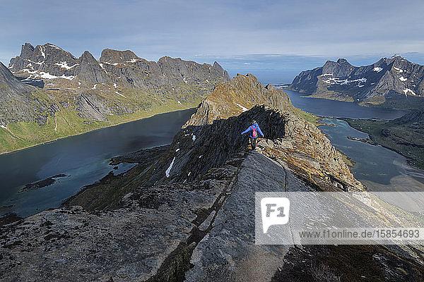 Wanderin beim Abstieg über den felsigen schmalen Grat vom Gipfel des Helvetestind  Lofotodden-Nationalpark  Moskenesøy  Lofoten  Norwegen