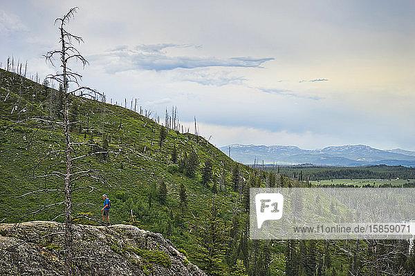 Mann wandert auf Berggipfel  Cascade Canyon  Grand Teton-Nationalpark