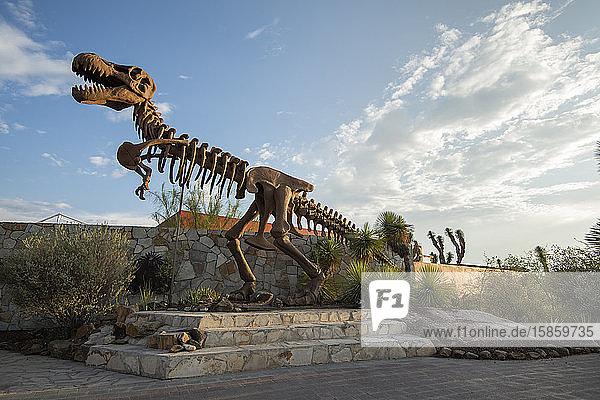 A dinosaur skeleton outside Museo del Desierto in Saltillo.