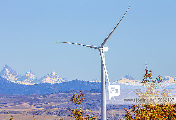 Wind turbines in field against blue sky and mountains