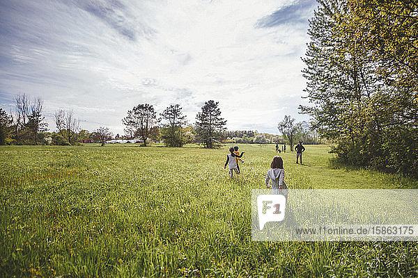 Rückansicht einer Familie  die an einem sonnigen Tag durch hohes  grünes Gras läuft