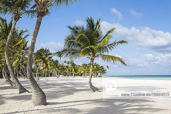 Juanillo Beach  Cap Cana  Punta Cana  Dominican Republic  West Indies  Caribbean  Central America