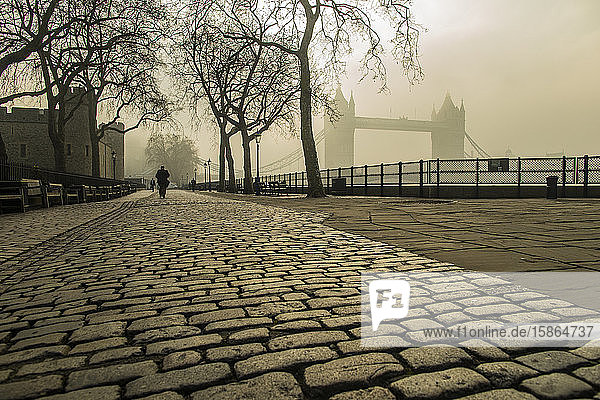 Tower Bridge  London  England  United Kingdom  Europe