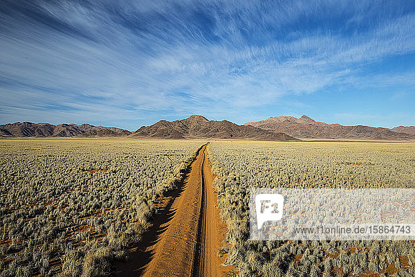 Straight track through the Namib Desert  Namibia  Africa