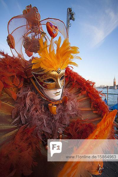 Venice Carnival,  Venice,  Veneto,  Italy,  Europe, Venice Carnival,  Venice,  Veneto,  Italy,  Europe