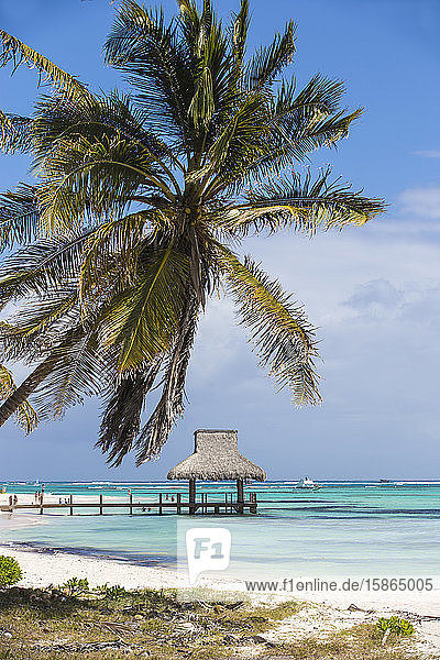 Wooden pier with thatched hut  Playa Blanca  Punta Cana  Dominican Republic  West Indies  Caribbean  Central America