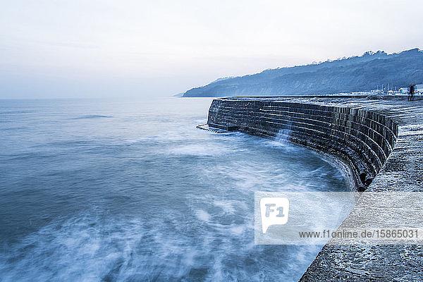 The Cobb  Lyme Regis  Dorset  England  United Kingdom  Europe
