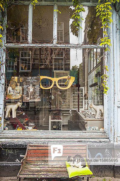 Spectacle shop  Amsterdam  The Netherlands  Europe