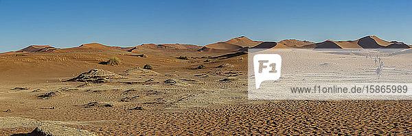 Tourists at sand dunes near Deadvlei  Namib Desert; Namibia