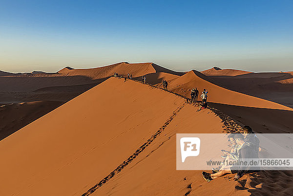 Tourists enjoying the sunrise from Dune 45  Sossusvlei  Namib Desert; Namibia