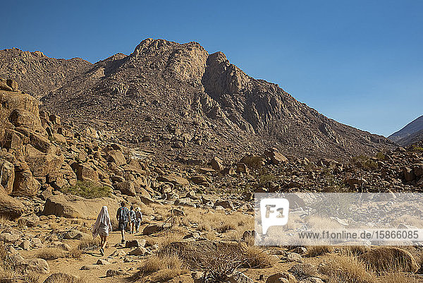Tourists walking to The White Lady rock painting  Brandberg Mountain  Damaraland; Kunene Region  Namibia