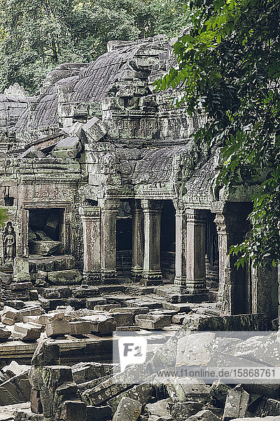 Ta Prohm Temple in the Angkor Wat complex; Siem Reap  Siem Reap  Cambodia