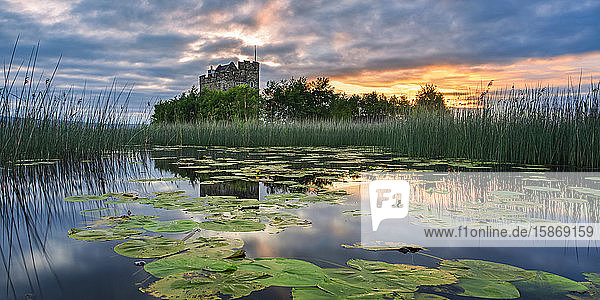 Small castle on an island on Lough Derg at sunrise in summer with lily pads floating on the lake in the foreground; Scariff  County Clare  Ireland