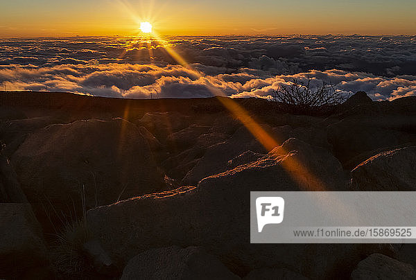 Golden sunburst above the clouds  East Maui Volcano (Haleakala) at sunset  Maui  Hawaii  United States of America
