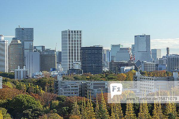 Autumnal trees in Meiji Jingu Gaien and skyscrapers  Tokyo  Honshu  Japan  Asia