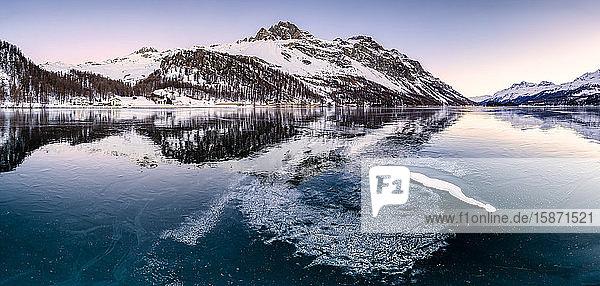 Panoramic view of the icy surface of Lake Sils at sunrise  Engadine Valley  Graubunden  Swiss Alps  Switzerland  Europe