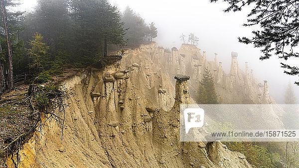 Earth Pyramids and woods in the autumn mist  Perca (Percha)  province of Bolzano  South Tyrol  Italy  Europe