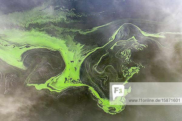 Aerial view by drone of swirls of green algae in a freshwater lake  Roadford Lake  Devon  England  United Kingdom  Europe