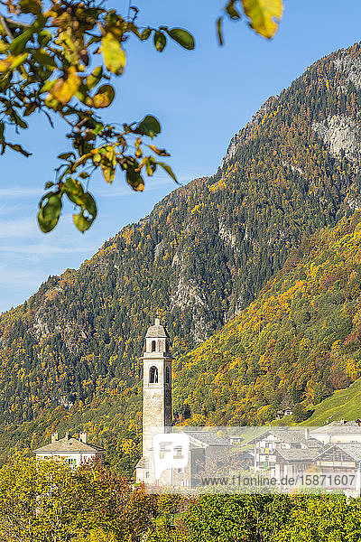Old bell tower and church in the autumnal landscape  Soglio  Val Bregaglia  Canton of Graubunden  Switzerland  Europe