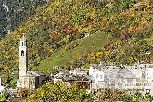 Larch trees and woods framing the village of Soglio in autumn  Val Bregaglia  Canton of Graubunden  Switzerland  Europe
