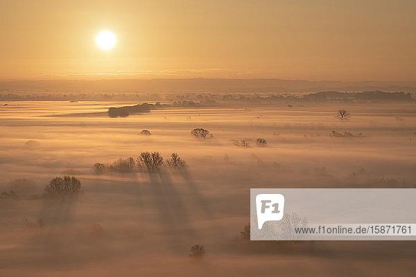 Sunrise over the mist covered Somerset Levels in winter  near Glastonbury  Somerset  England  United Kingdom  Europe