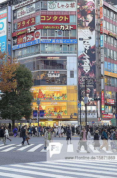 People crossing Shibuya Crossing  Shibuya  Tokyo  Honshu  Japan  Asia