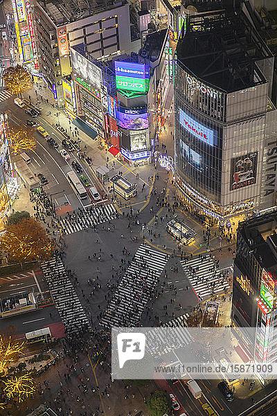Shibuya Crossing at night  Shibuya  Tokyo  Honshu  Japan  Asia