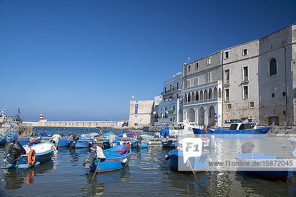 Colourful wooden boats in the harbour in Monopoli  Puglia  Italy  Europe